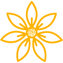 YELLOWiconfinder_Flower-3_2976462